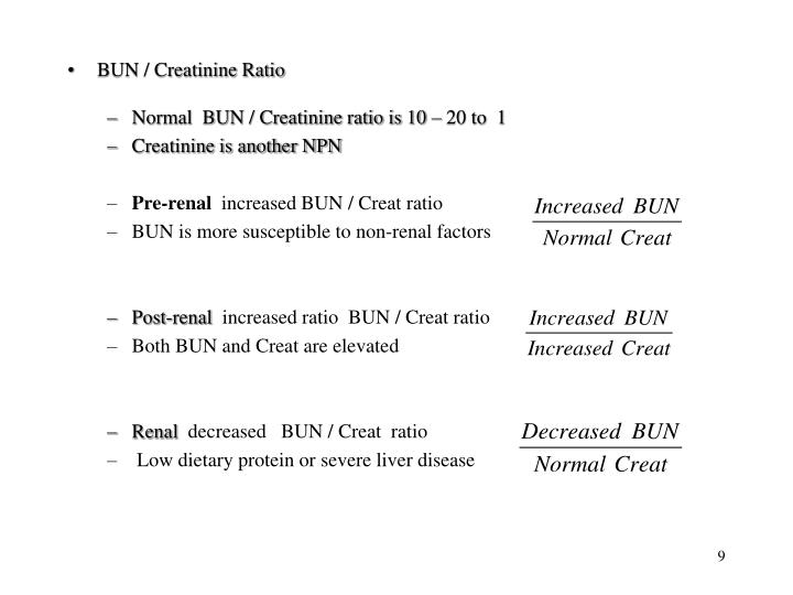 BUN / Creatinine Ratio