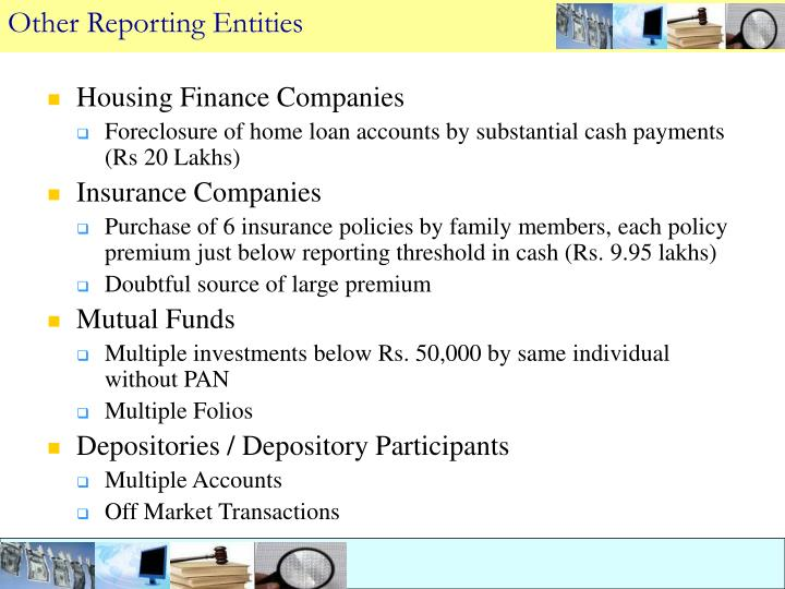 Other Reporting Entities