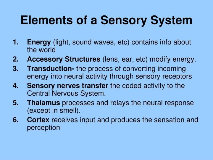 Elements of a Sensory System