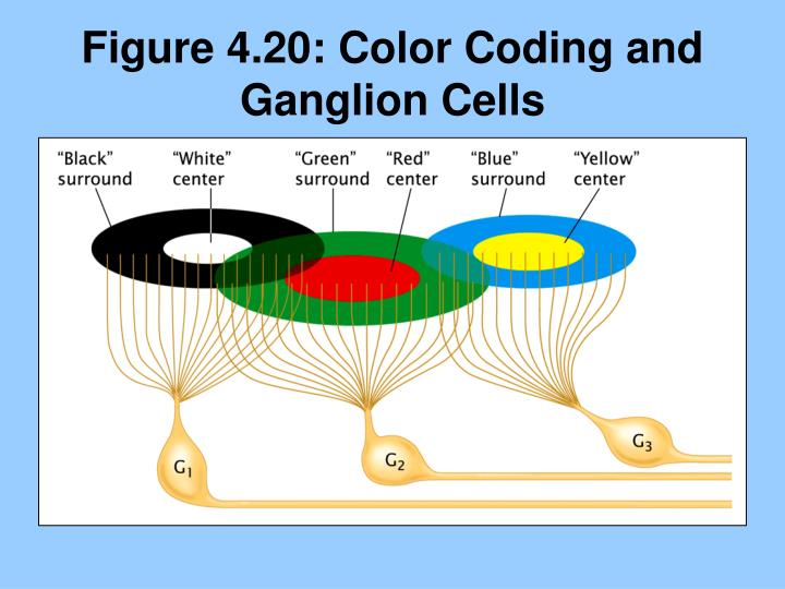 Figure 4.20: Color Coding and