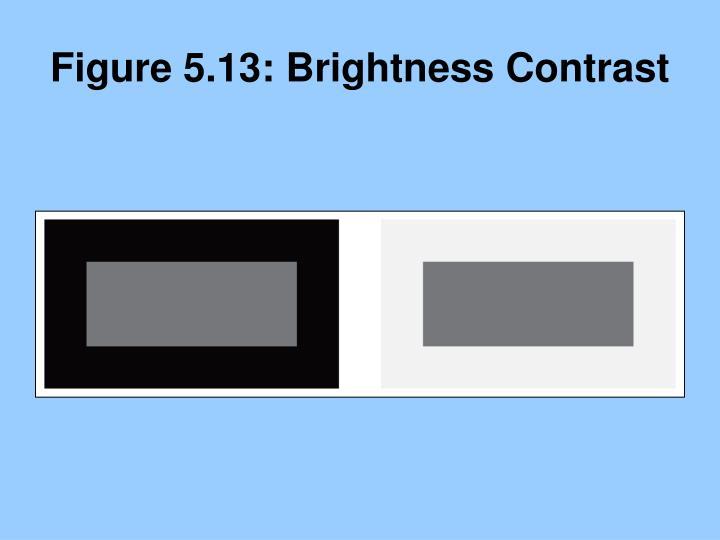 Figure 5.13: Brightness Contrast