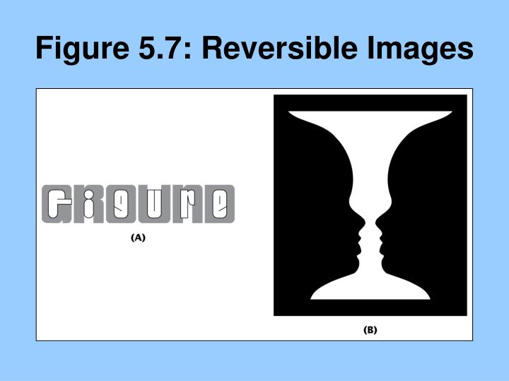 Figure 5.7: Reversible Images