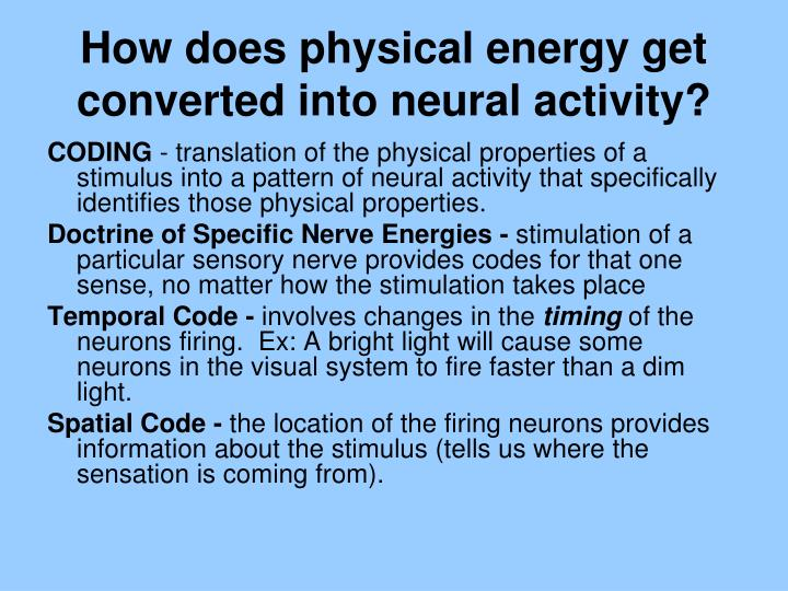 How does physical energy get converted into neural activity?