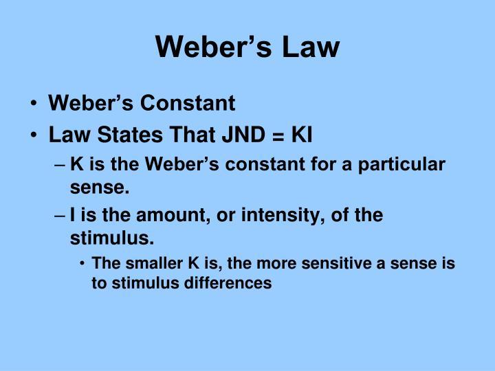Weber's Law