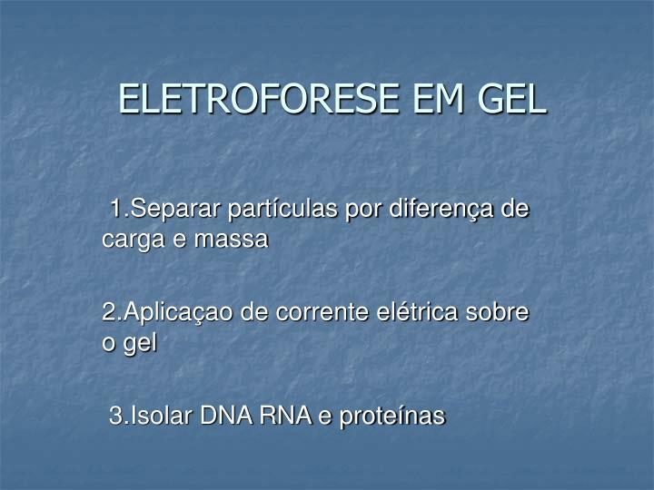 ELETROFORESE EM GEL