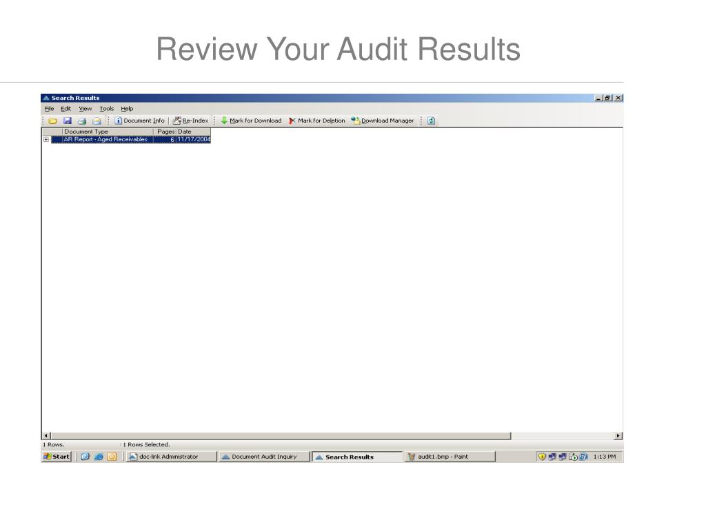 Review Your Audit Results