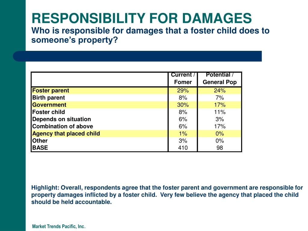 RESPONSIBILITY FOR DAMAGES
