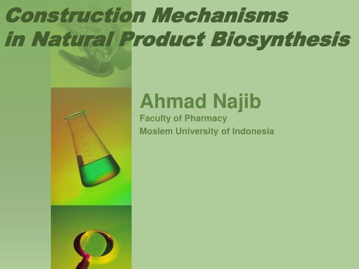 Construction mechanisms in natural product biosynthesis