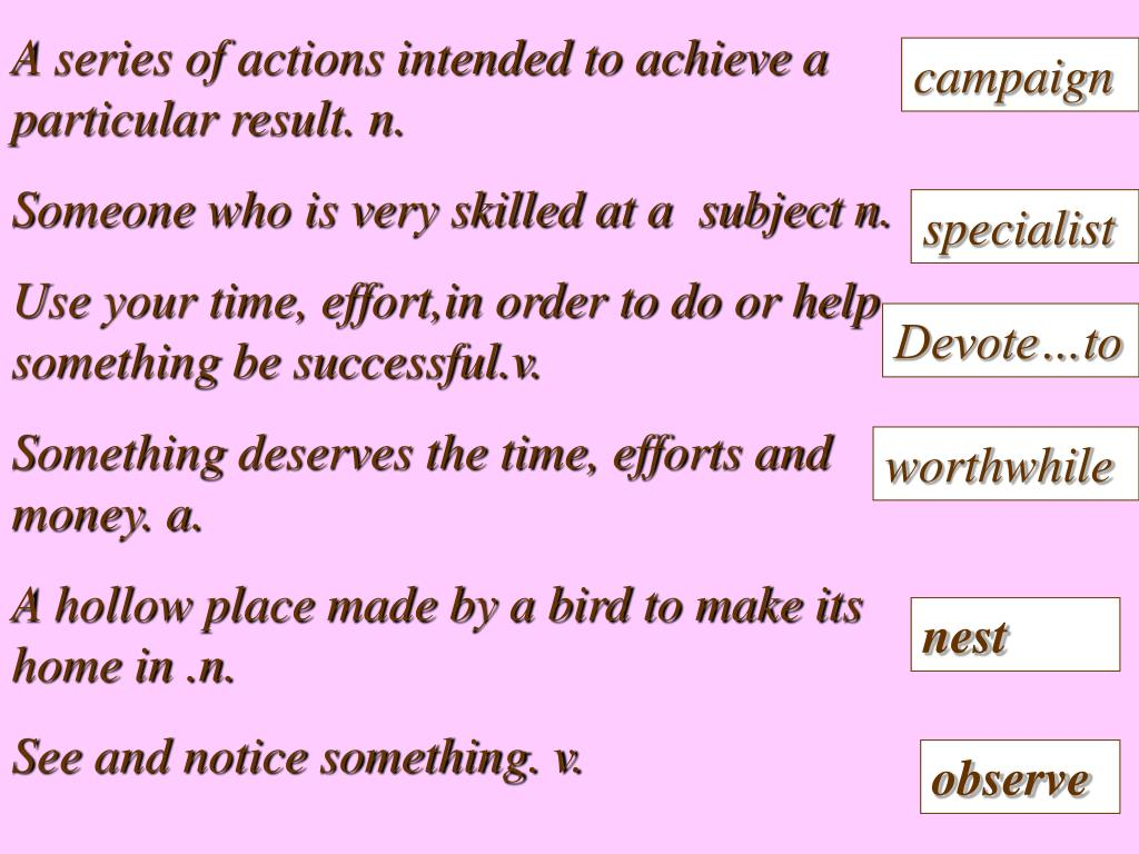 A series of actions intended to achieve a particular result. n.