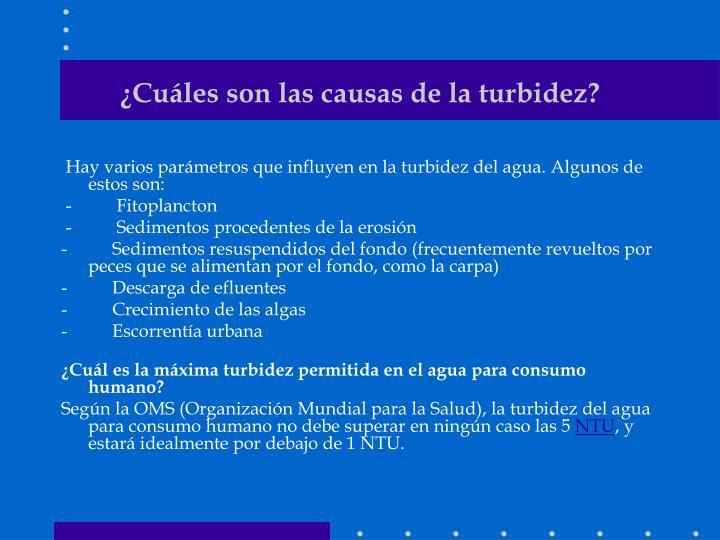 Ppt turbiedad powerpoint presentation id 1201501 for Peces de agua fria para consumo humano