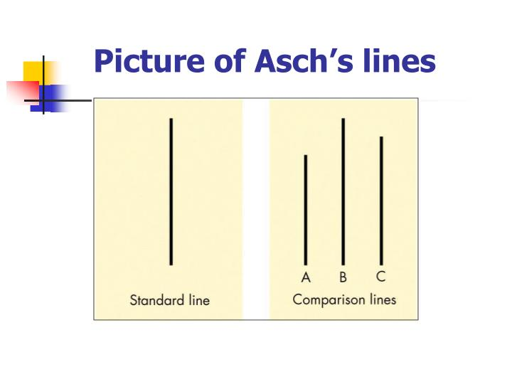 Picture of Asch's lines