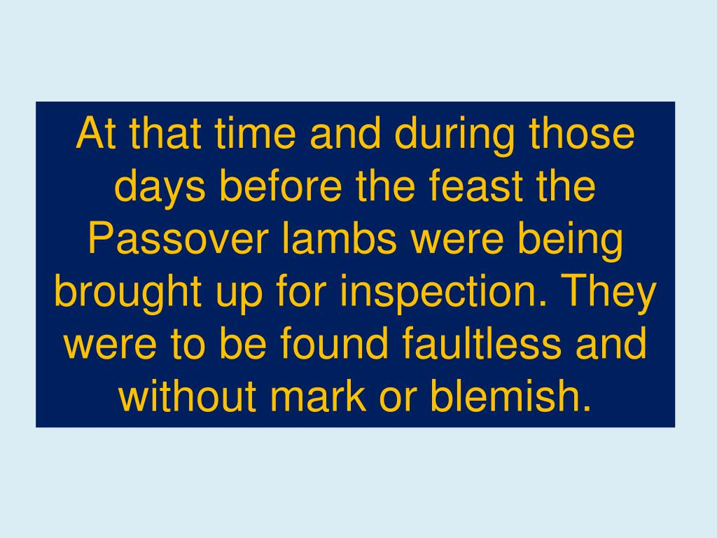 At that time and during those days before the feast the Passover lambs were being brought up for inspection. They were to be found faultless and without mark or blemish.