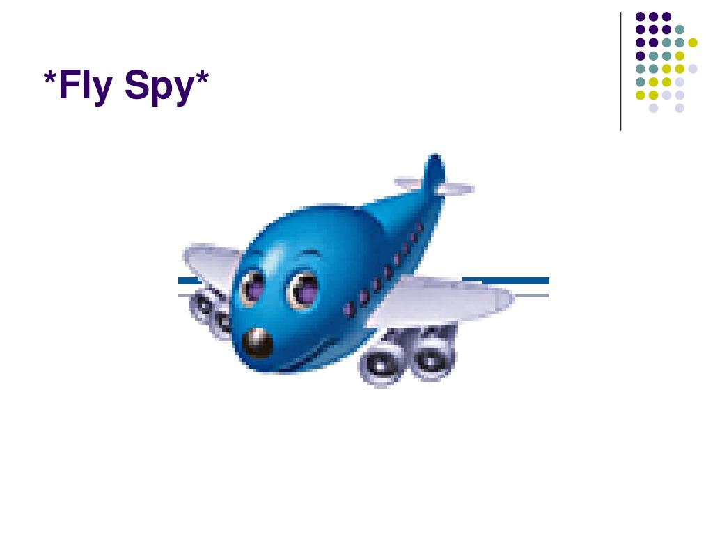 *Fly Spy*