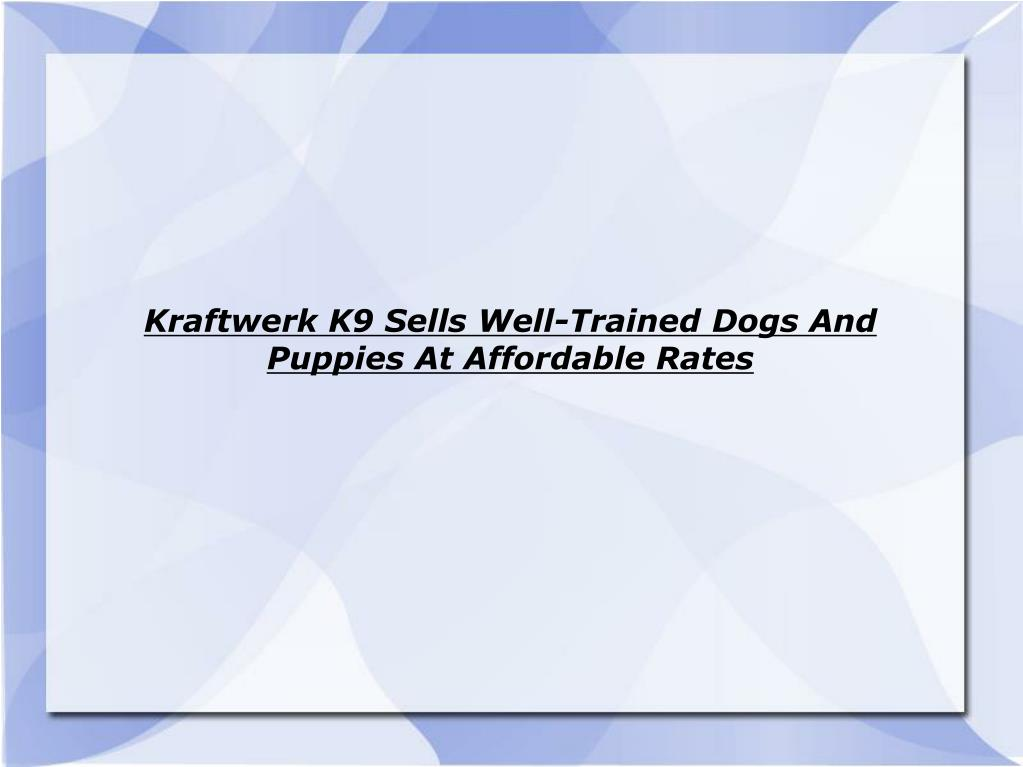 Kraftwerk K9 Sells Well-Trained Dogs And Puppies At Affordable Rates