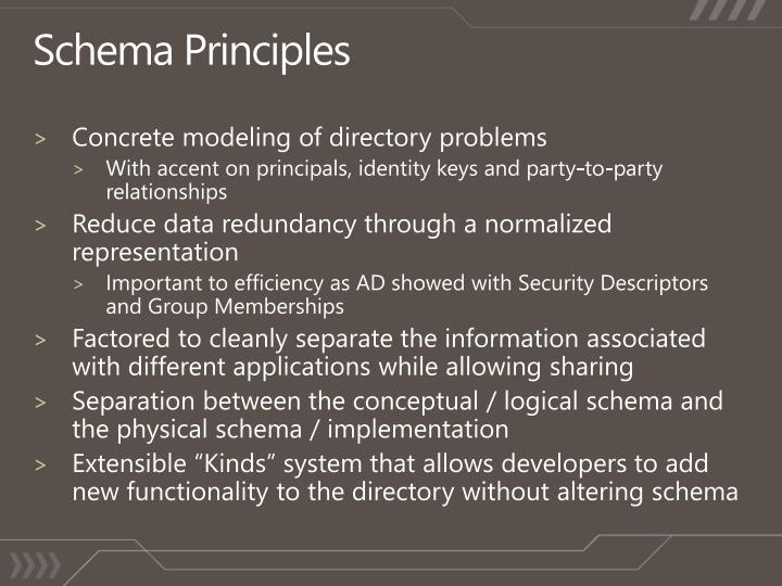 Schema Principles