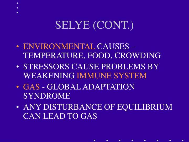 SELYE (CONT.)