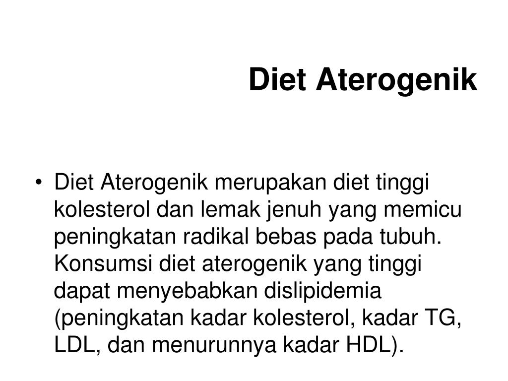 Diet Aterogenik