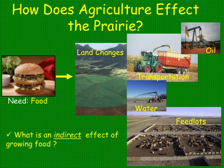 How Does Agriculture Effect the Prairie?