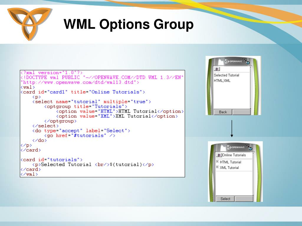 WML Options Group