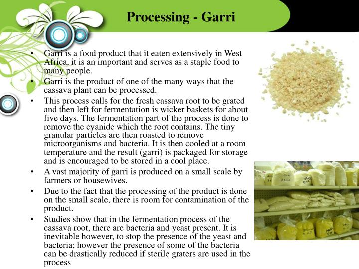 Processing - Garri