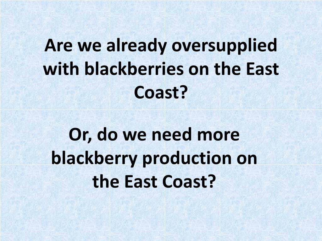 Are we already oversupplied with blackberries on the East Coast?
