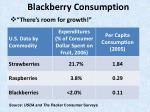 blackberry consumption