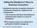 telling the blackberry s story to american consumers18