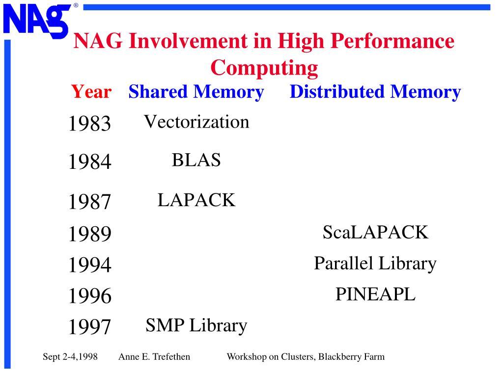 NAG Involvement in High Performance Computing