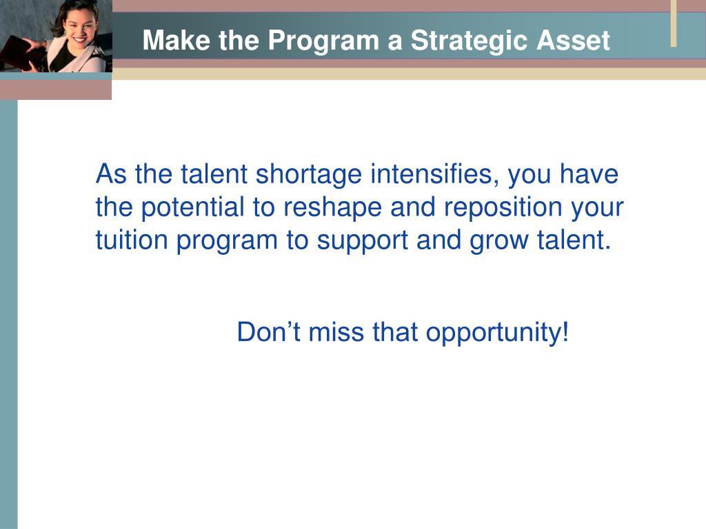 Make the Program a Strategic Asset