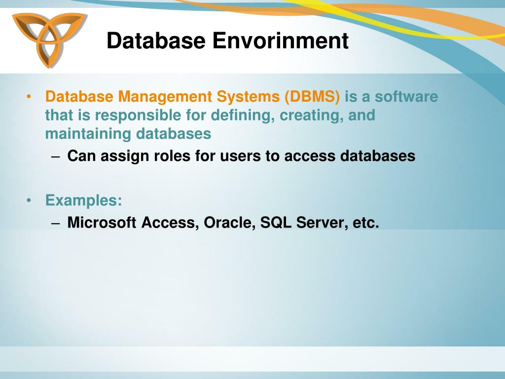 Database Envorinment