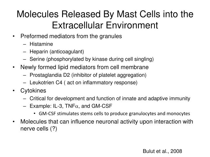 Molecules Released By Mast Cells into the Extracellular Environment