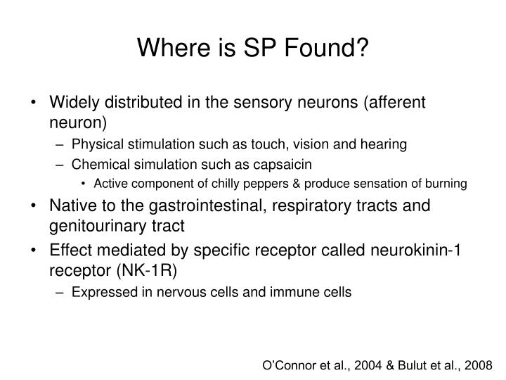Where is SP Found?