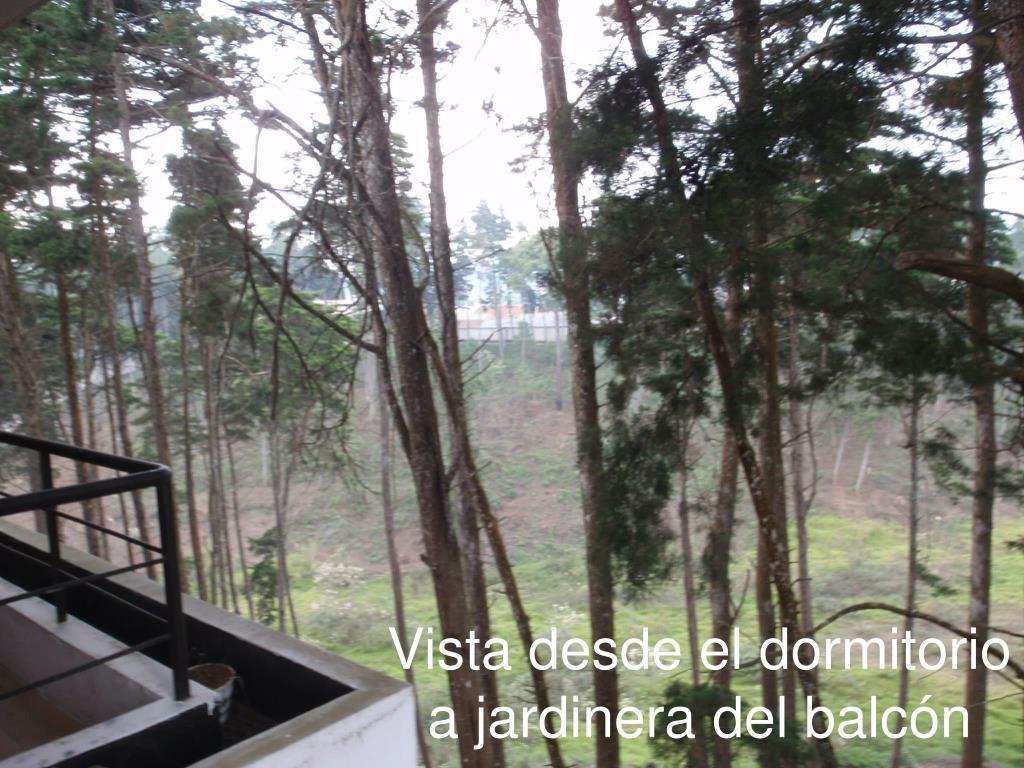 Vista desde el dormitorio a jardinera del balcón