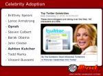 celebrity adoption