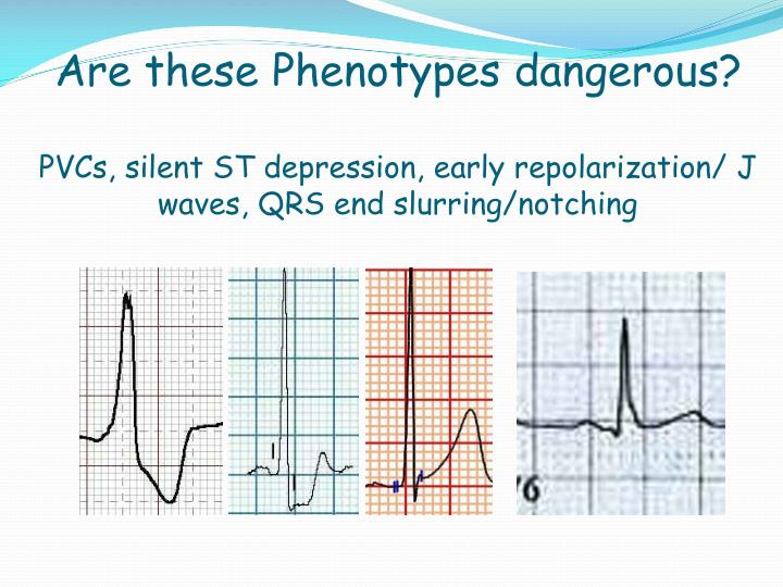 Are these Phenotypes dangerous?