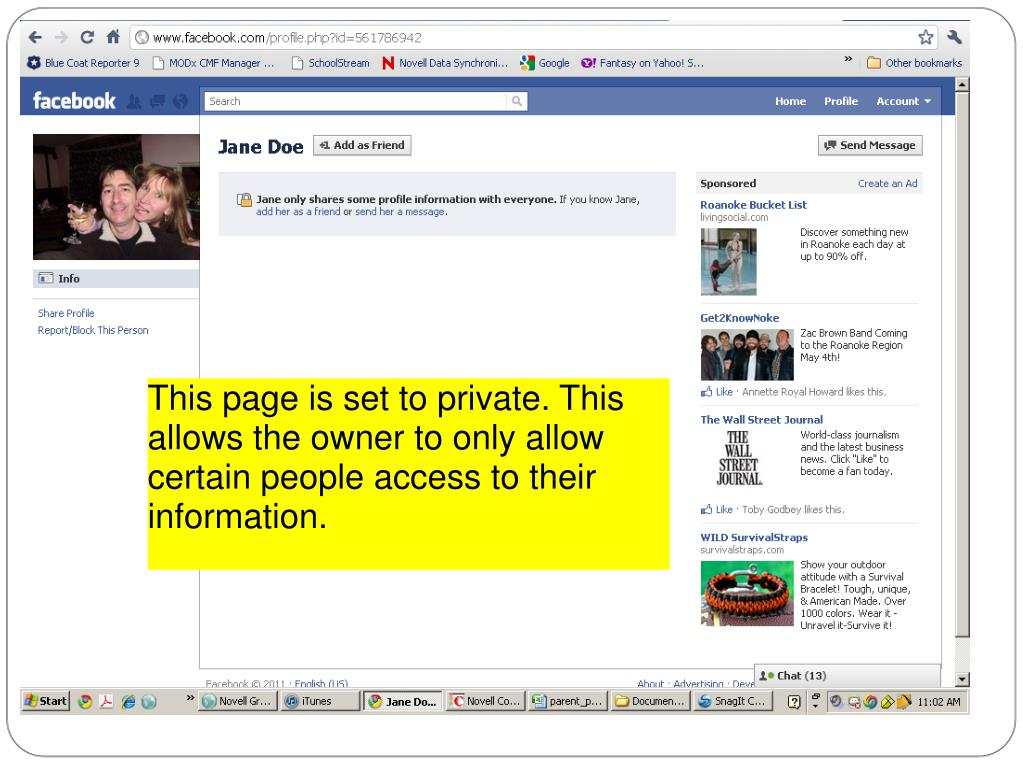 This page is set to private. This allows the owner to only allow certain people access to their information.