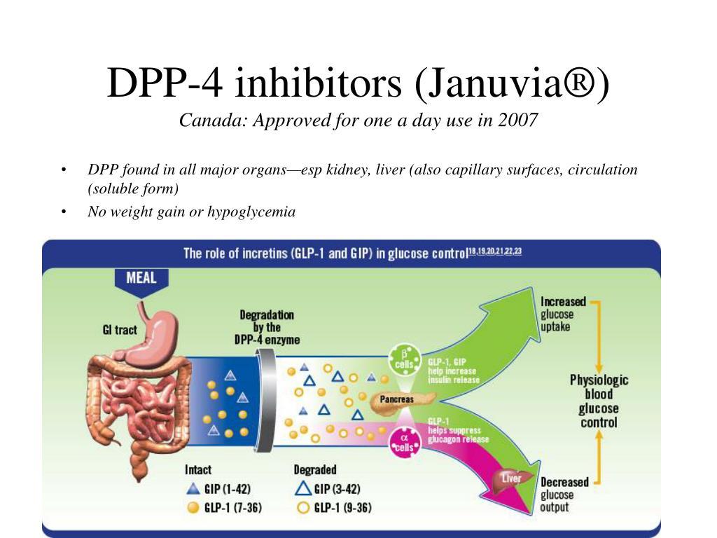 DPP-4 inhibitors (Januvia®)