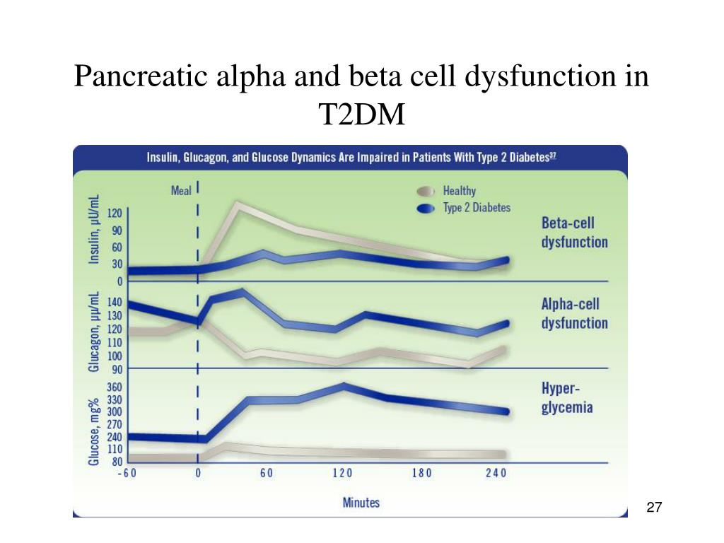 Pancreatic alpha and beta cell dysfunction in T2DM