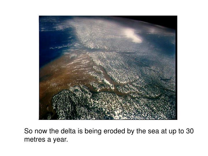 So now the delta is being eroded by the sea at up to 30 metres a year.