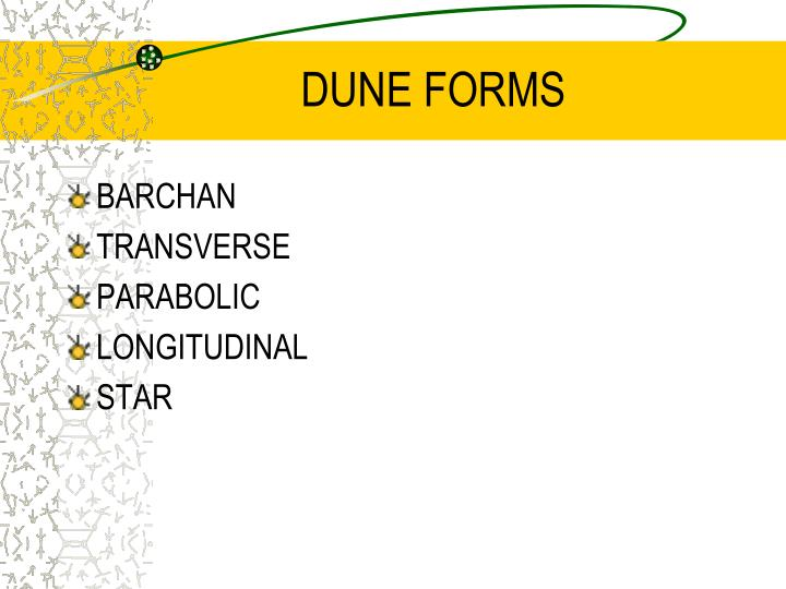 DUNE FORMS