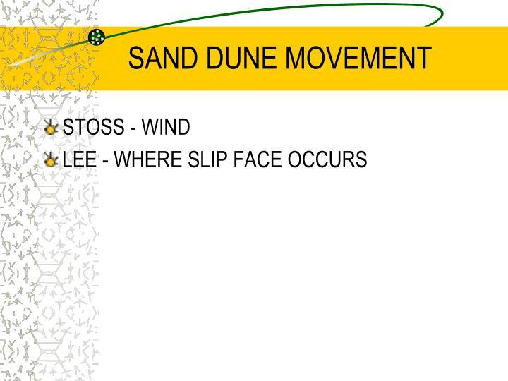 SAND DUNE MOVEMENT