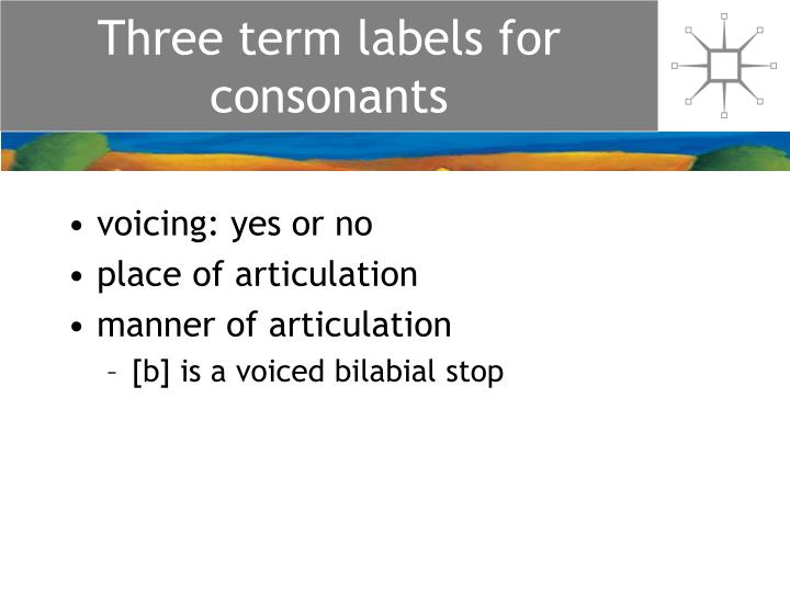 Three term labels for consonants