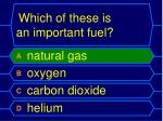 which of these is an important fuel1