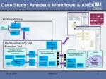 case study amadeus workflows aneka