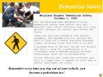 pedestrian safety1