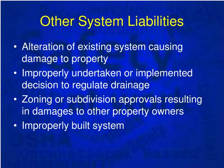 Other System Liabilities