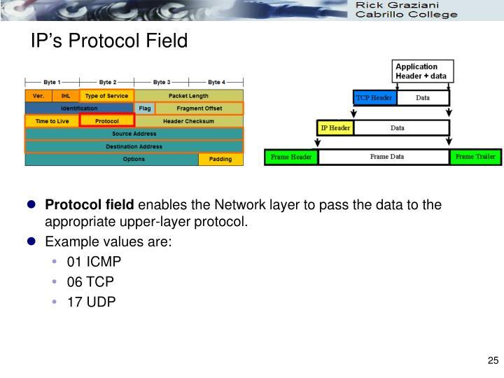 IP's Protocol Field