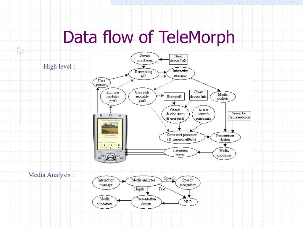 Data flow of TeleMorph