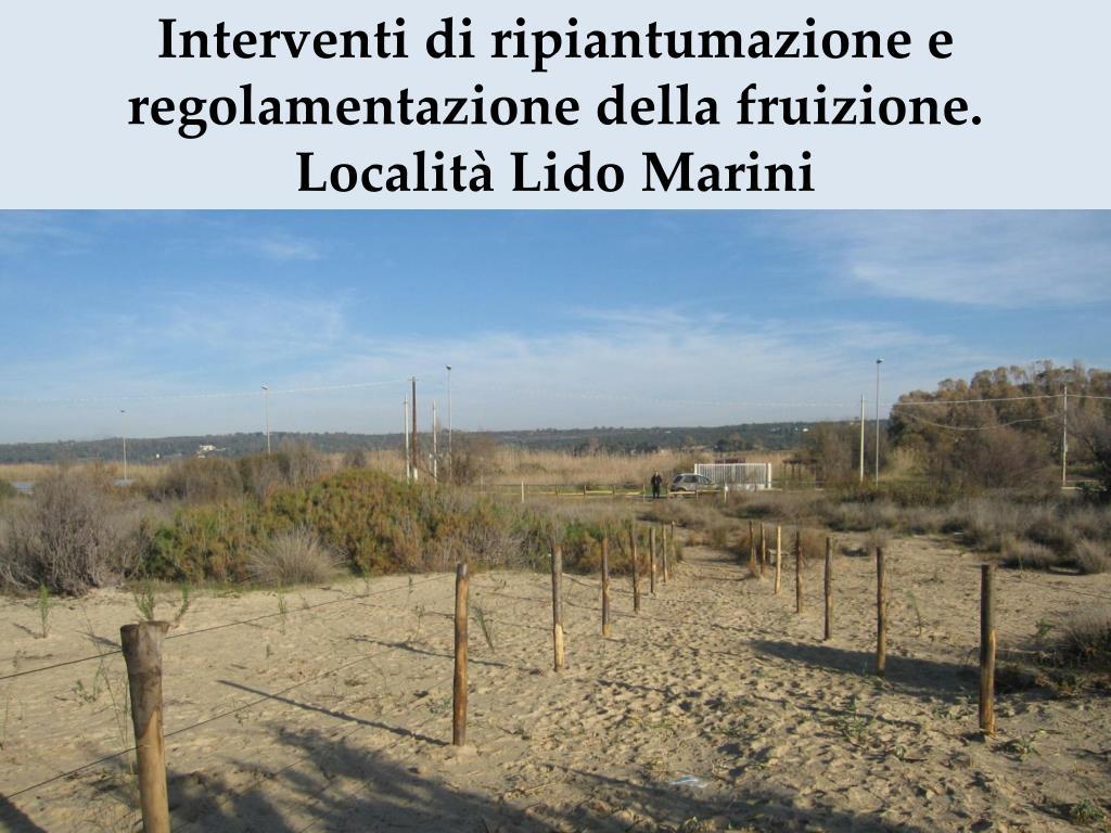 Interventi di ripiantumazione e regolamentazione della fruizione. Località Lido Marini