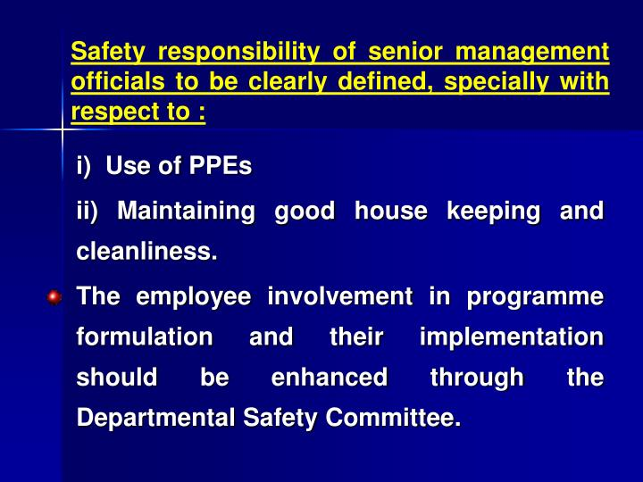 Safety responsibility of senior management officials to be clearly defined, specially with respect to :